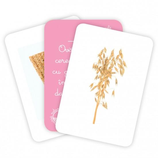 Carti de joc Montessori - Originea alimentelor