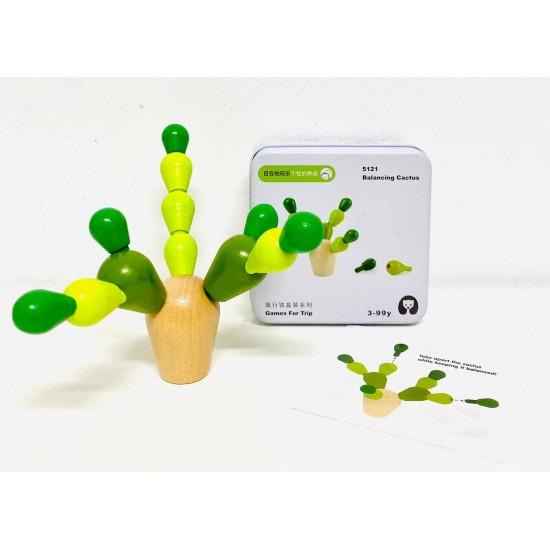 Mini Cactus in echilibru