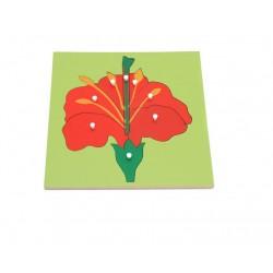 Puzzle educativ Botanic Componentele unei Flori