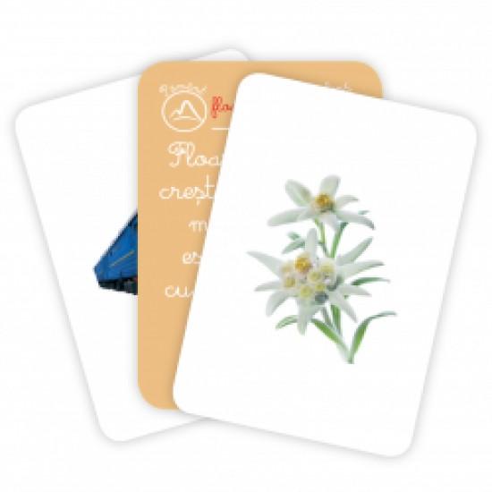 Carti de joc Montessori - Pamânt, aer, apa