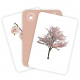 Carti de joc Montessori - Arbori: frunze, flori, fructe