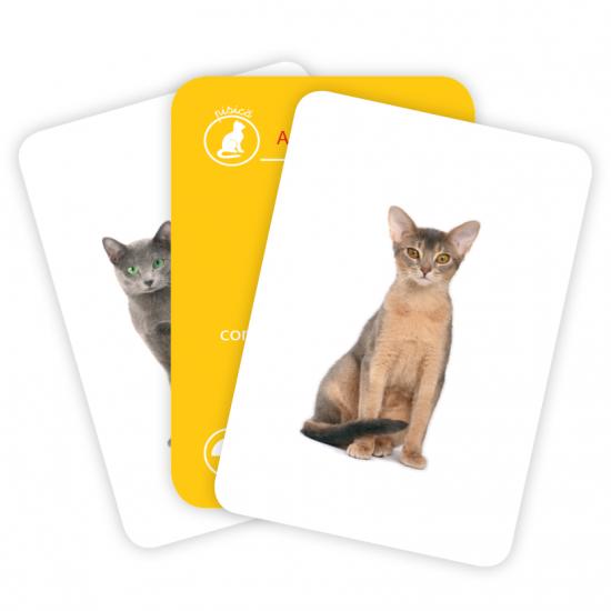 Carti de joc Montessori/Câini si pisici