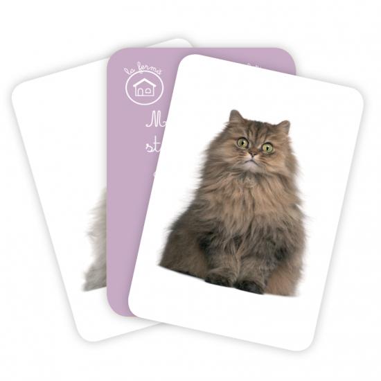 Carti de joc Montessori - Familii de animale