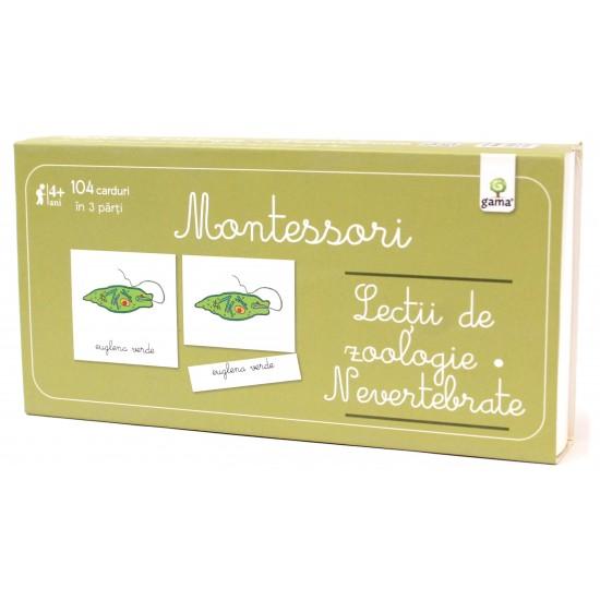 Carti Montessori - Lecţii de zoologie: Nevertebrate