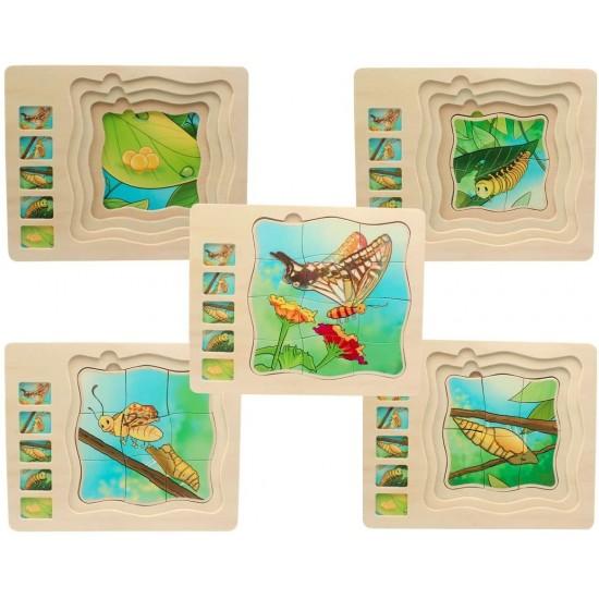 Puzzle educativ Ciclul vietii - Fluture ONSHINE