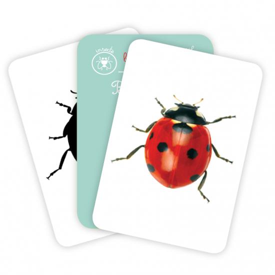 Carti de joc Montessori - Vieţuitoare