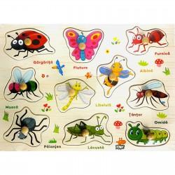 Puzzle incastru in limba romana Insecte